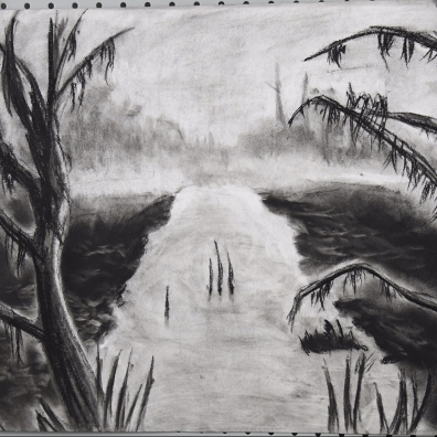 24 x 18 inch willow / charcoal